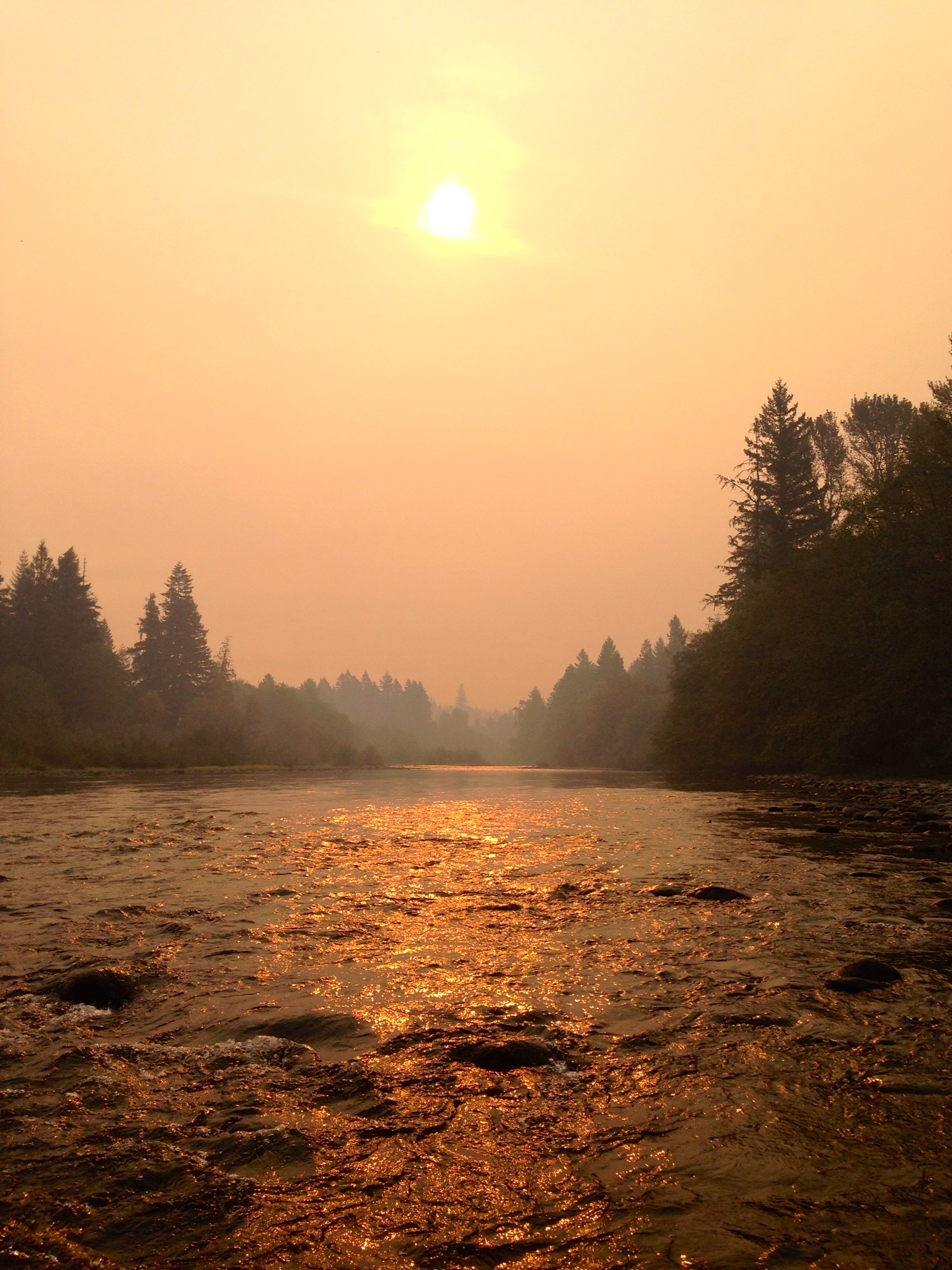 Forest Fires and Drinking Water Quality - Clackamas River Water